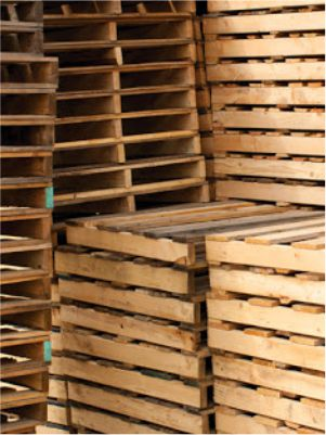 Download icon for wood pallet industry hazard mitigation whitlepaper | AIRPLUS Industrial